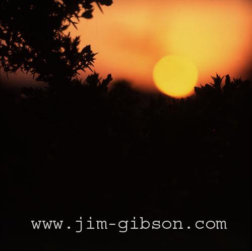 fiery glow burning sunset - photo #39
